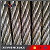 GALV. Flexible Steel Wire Rope Competitive